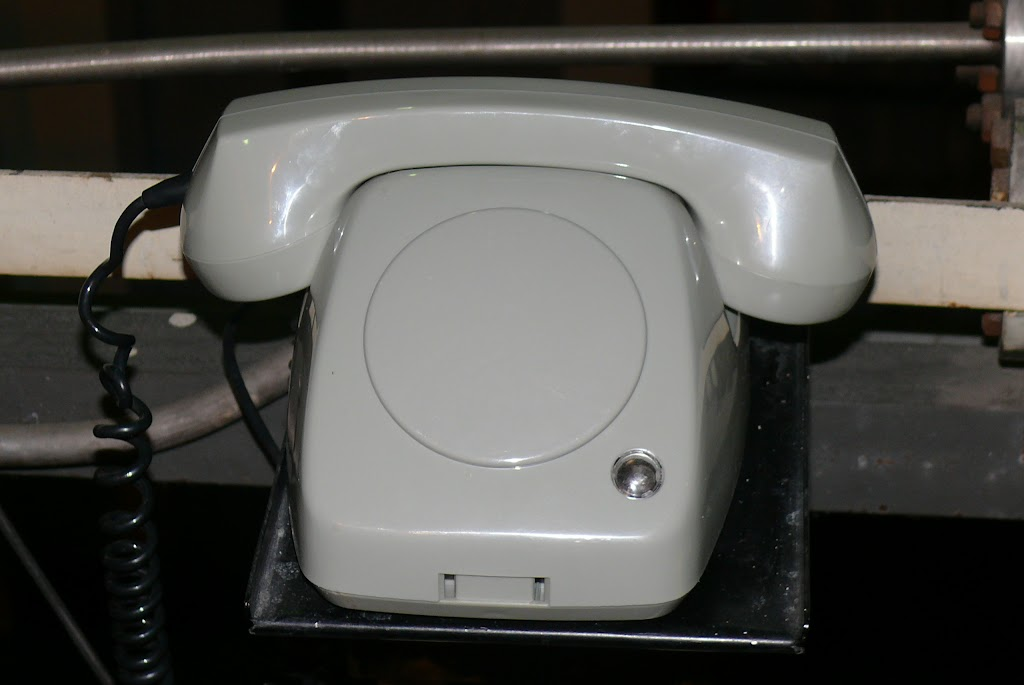 Belsk - Świerk 2011 (SB) - P1060351.JPG