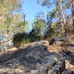 Nice scenery on a steep walk (203305)