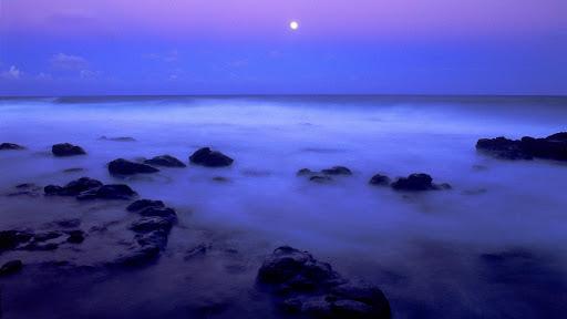 Island Mist.jpg