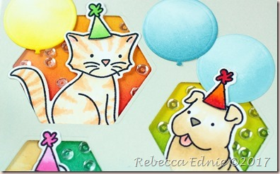 c4c puppies n kittens party2