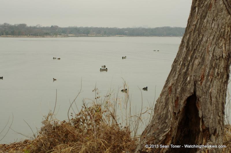 01-26-13 White Rock Lake - IMGP4348.JPG