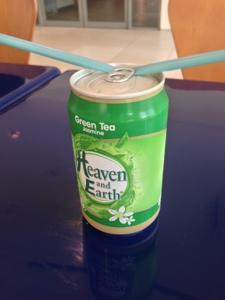 Heaven and Earth Green Tea - Jasmin