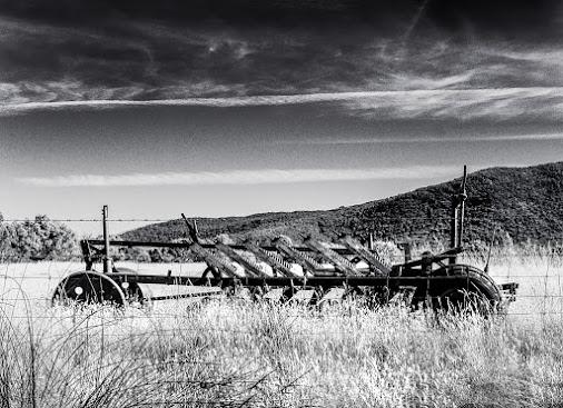 Abandoned machinery, Victoria, Australia.  #australia  #oldmachines  #blackandwhitephotography