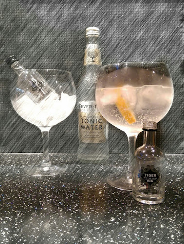 Product review, gin review, Tiger Gin, Shropshire Gin Company, Gerry's Kitchen