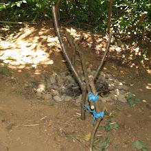 Taborjenje, Lahinja 2006 2.del - P0158655.JPG
