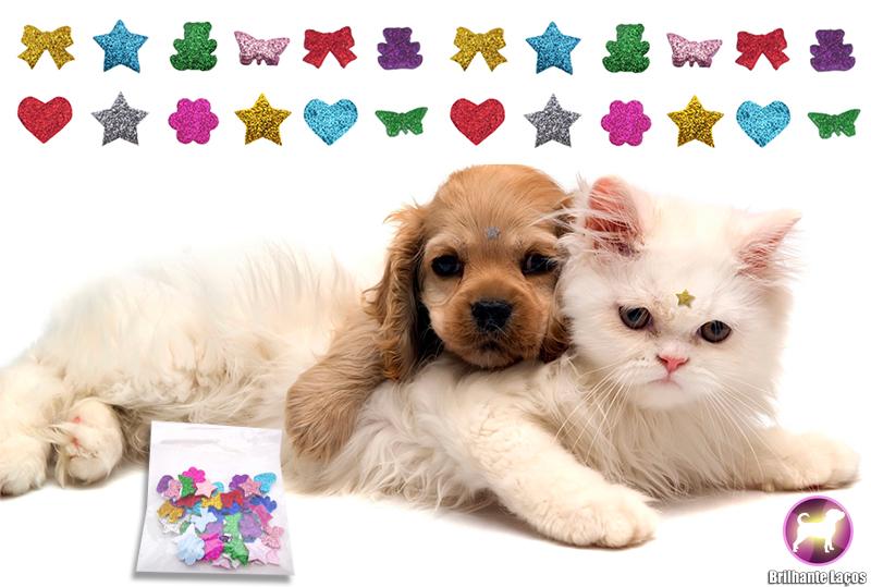 Adesivos EVA para cães
