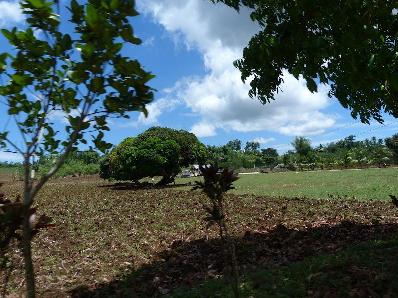 Camotes et Poron island - philippines1%2B908.JPG
