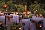 1303400936_chefs_garden.jpg