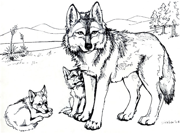 Nature Coloring Pages For Adults Eassume