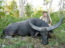 Mr Fehrer Germany took this big bull in thick vegetation and close range 20 metres, with a 458 win mag