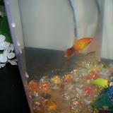 Fish - 101_1803.JPG