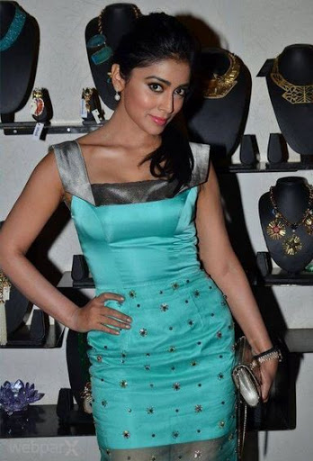 Shriya Pushpendra Saran Net Worth