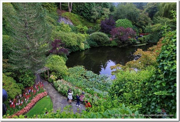160906_Butchart_Gardens_0054