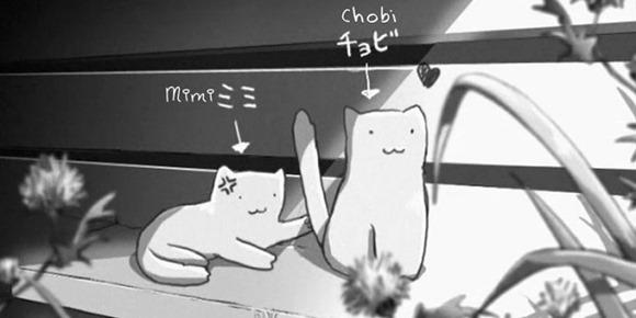 Lei e il Suo Gatto