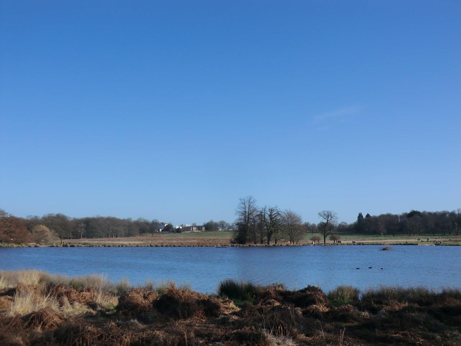 CIMG2462 Upper Pen Pond