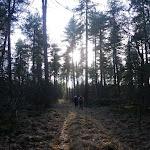 013-Nieuwjaarswandeling met de Bevers.Menno gidst ons door het mooie natuurgebied De Regte Heide te Go+»rle