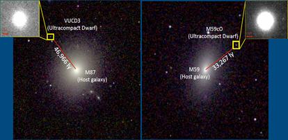 galáxias anãs ultracompactas, VUCD3 e M59cO, com buracos negros supermassivos