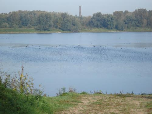 Ooijpolder e Millingerwaard - Distese Acqua