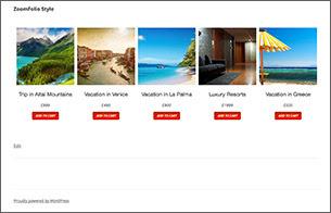 ZoomFolio - WordPress Portfolio Plugin - 8