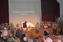Purkersdorf Dreamers 2015 (76)