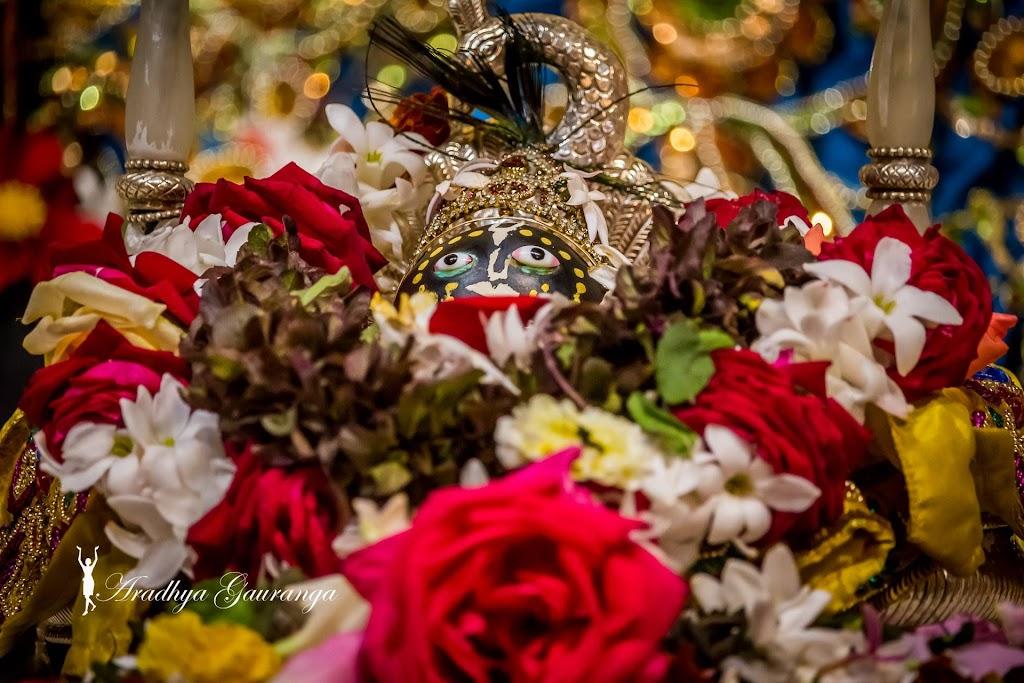 ISKCON Mayapur Deity Darshan 18 Jan 2017 (29)