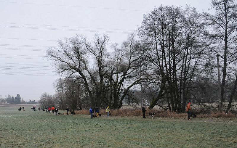 20140101 Neujahrsspaziergang im Waldnaabtal - DSC_9778.JPG