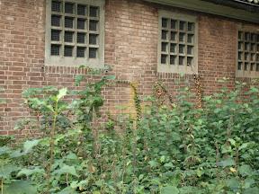 Geschilderd kruis op de muur van gebouw Z5 op Zuidkamp
