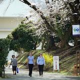 2014 Japan - Dag 2 - mike-P1050503-0039.JPG