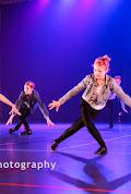 Han Balk Voorster Dansdag 2016-3696-2.jpg