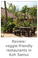 review of vegetarian friendly restaurants in koh samui thailand