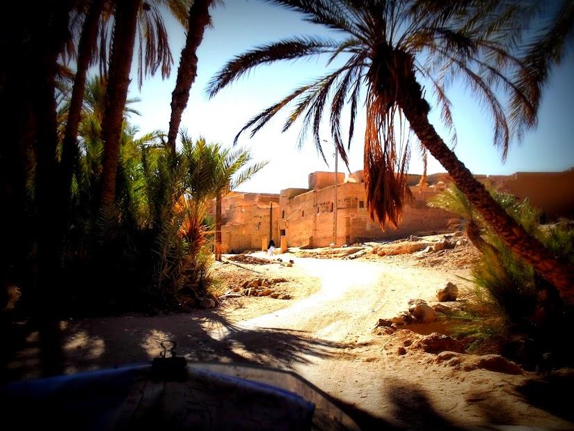 marrocos - Marrocos e Mauritãnia a Queimar Pneu e Gasolina - Página 11 DSCF1278