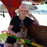 Jan's spider monkey at San Juan del Sur, Nicaragua