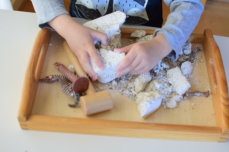 Extracting  Dinosaur Bones