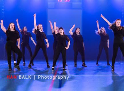 Han Balk Voorster Dansdag 2016-4103-2.jpg