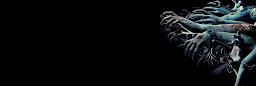 Profil kapak fotoğrafı