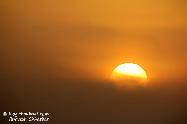 Sunrise at Ranthambhore National Park