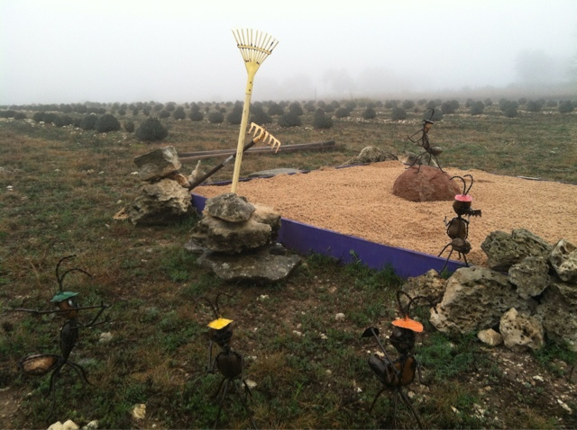Wandering around the lavender fields in the fog, we discovered Bernadette's zen garden nestled in among the rows.