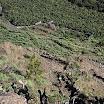 La Palma 30.01.11 217.JPG