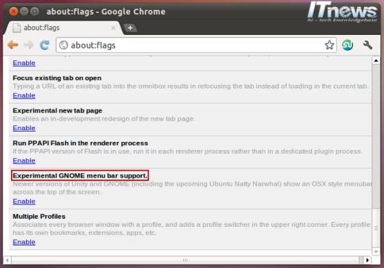 google-chrome-unity