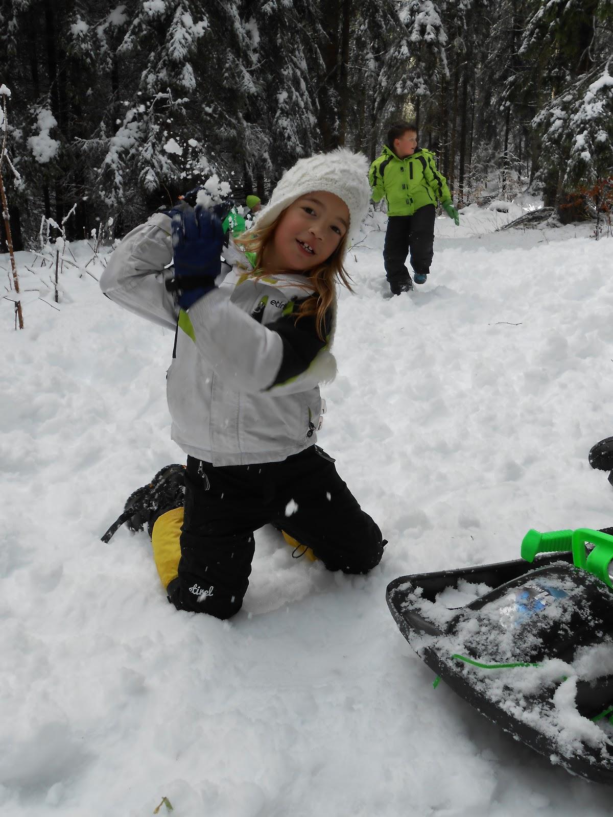 MČ zimovanje, Črni dol, 12.-13. februar 2016 - DSCN5005.JPG