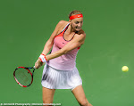 Petra Kvitova - 2016 Dubai Duty Free Tennis Championships -DSC_5545.jpg