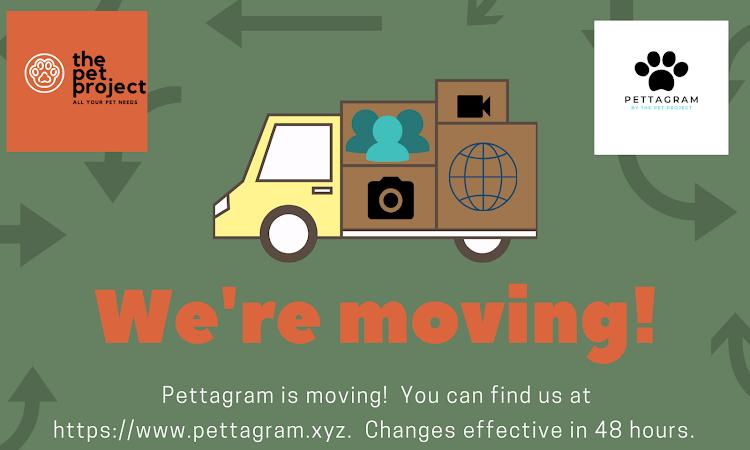 Pettagram migrates to Pettagram.xyz