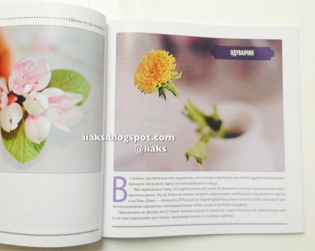 Книга цветы из фоамирана скачать бесплатно
