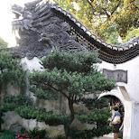 Yu Garden Shanghai in Shanghai, Shanghai, China