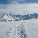 Kurs odbył się w Tatrach, w Dolinie Gąsienicowej. Obejmował m.in. wspinaczkę lodową, zakładanie stanowisk w śniegu, asekuracje, ratowanie ze szczelin i takie tam :P  Pod presją otoczenia wrzucam pierwszą część fotek, wstępnie przejrzanych. Kolejne niebawem.