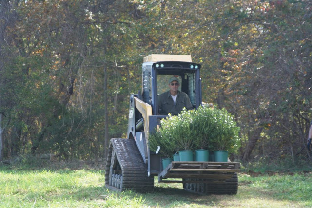 Guilford Salt Meadows Sanctuary Planting - 299688_2078607093757_1502411954_31695573_143921422_n.jpg