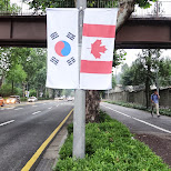 south korean and canadian flags in Seoul, Seoul Special City, South Korea
