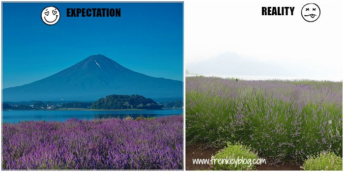 Foto Di Natural Living Center ( Expectation Vs Reality )