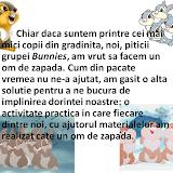 Grupa Bunnies - activitate practica
