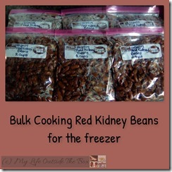 Bulk Red Kidney Beans
